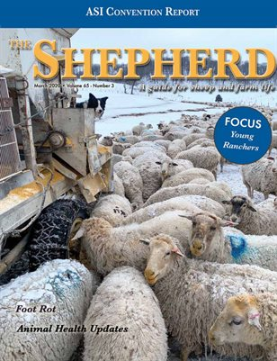 The Shepherd March 2020