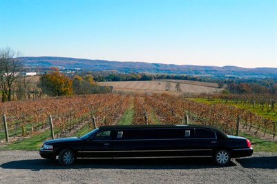 Black Stretch Limo by the Vineyards