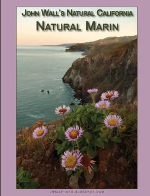 Natural Marin