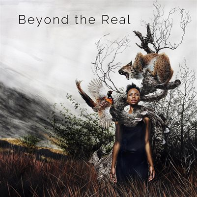 Beyond the Real Catalogue
