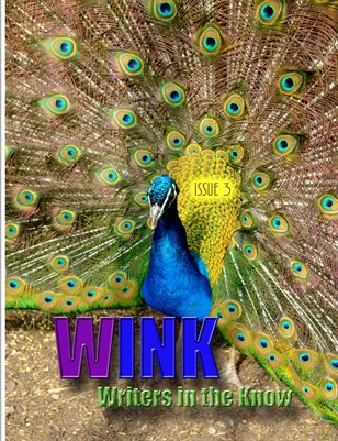 WINK Issue 3