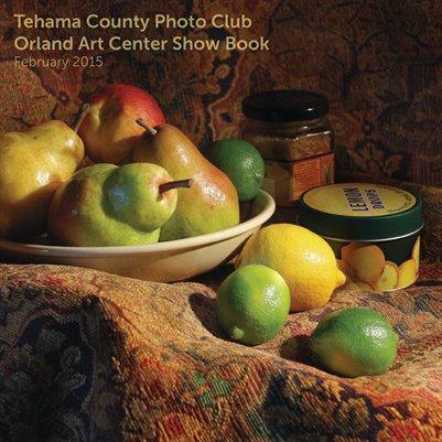 Orland Art Center Show Book 2015