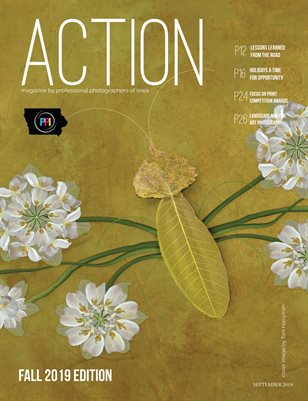 ACTION magazine by PPI - Fall 2019