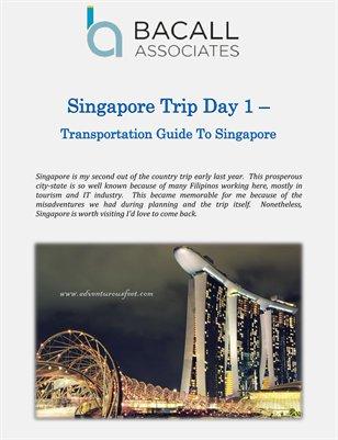 Bacall Associates: Singapore Trip Day 1 - Transportation Guide To Singapore