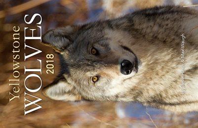 2018 Yellowstone Wolves Calendar