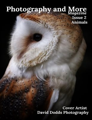 Issue 2 Animals