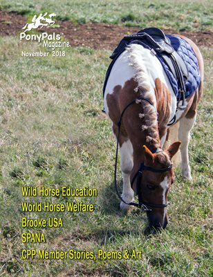 November 2018 Pony Pals Magazine