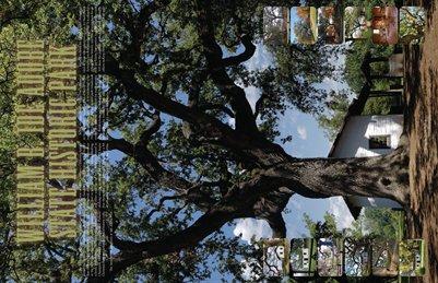 Ide Adobe State Historic Park Calendar