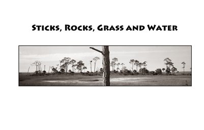 Sticks, Rocks, Grass and Water (of North Florida)