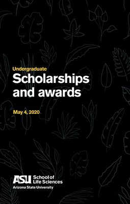 Undergraduate scholarships and awards 2020