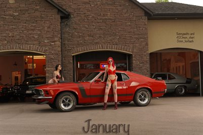 SunnySedro January 2021 12 x 18 Poster