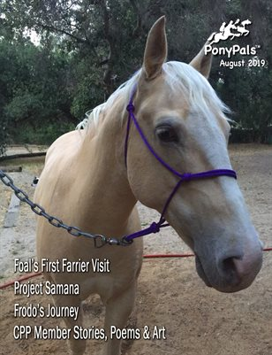 August 2019 Pony Pals Magazine - Vol.9#3