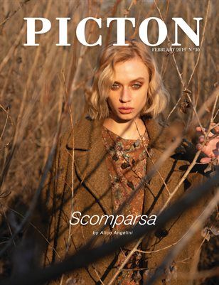 Picton Magazine FEBRUARY 2019 N30 Cover 2