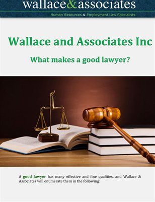 Wallace and Associates Inc: What makes a good lawyer?