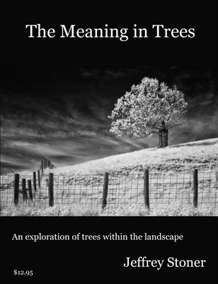 The Meaning in Trees  (retail price on front cover)