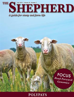 The Shepherd July 2018