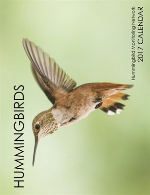 HMN's 2017 Hummingbird Calendar