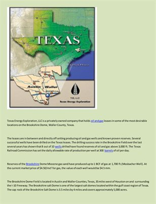 Texas Energy Exploration LLC - Acquisition
