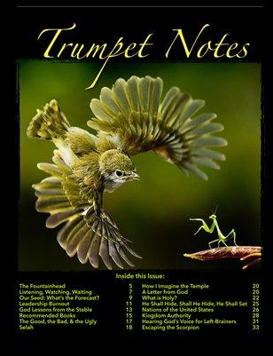 Trumpet Notes 6