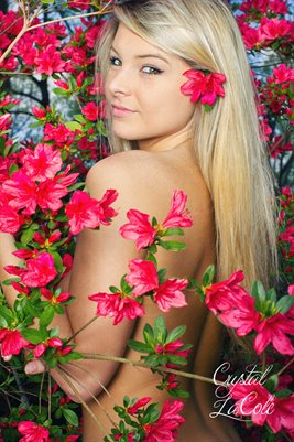 Crystal LaCole Flowers 1