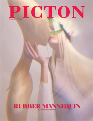 Picton Magazine February  2020 N423 Cover 3