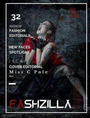 Fashzilla Magazine (December 2020)