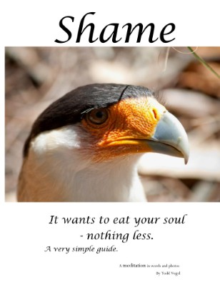 Shame - it wants to eat your soul