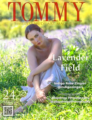 Indigo Rose Zingari - Lavender Field - Z6sydney Photography