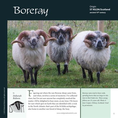 Deborah Robson's Guide to Fiber: Boreray