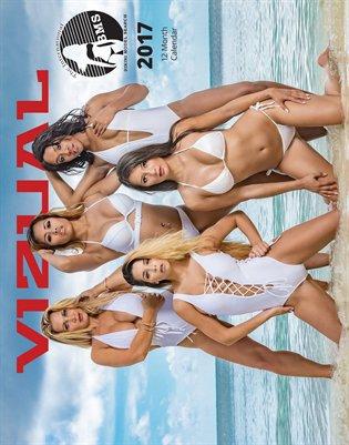 Vizual Magazine IBMS Calendar 2017