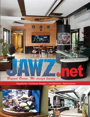 Jawz.net by Longe Magazine