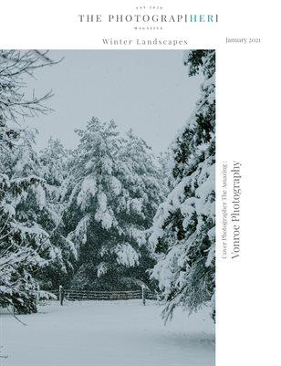 Winter Landscapes   January 2021