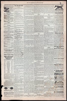 (PAGES 3-4)  JULY 08, 1882 MAYFIELD MONITOR NEWSPAPER, MAYFIELD, GRAVES COUNTY, KENTUCKY
