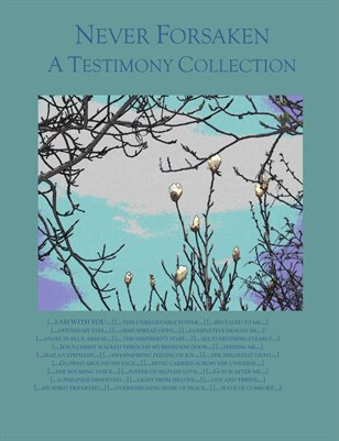 Never Forsaken: A Testimony Collection