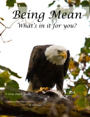 Being Mean - what's in it for you?