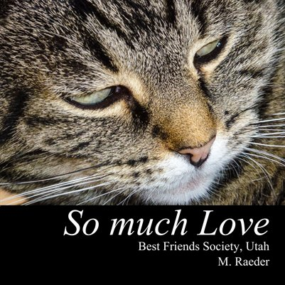 So much love - Best Friend Animal Society