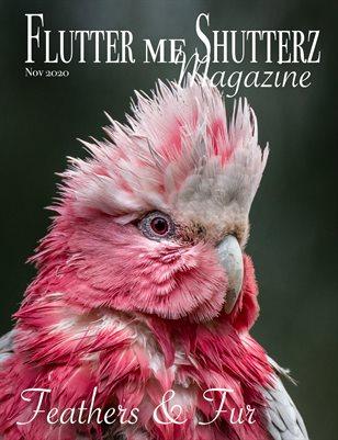 Flutter me Shutterz Magazine - Feathers & Fur - Nov 2020