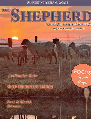 The Shepherd May 2016