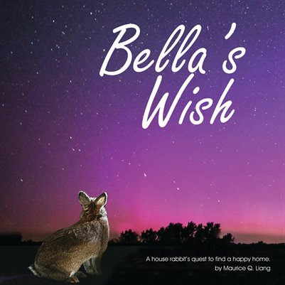 Bella's Wish