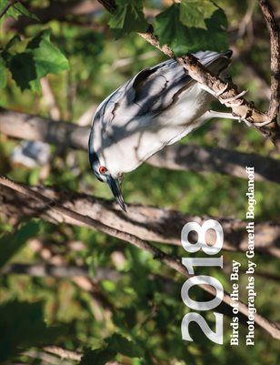 Birds of the Bay 2018 Calendar