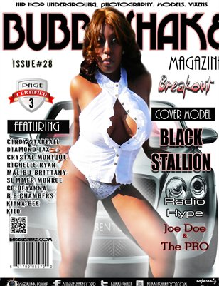 Bubble Shake Magazine Issue #28 Page 3- Black Stallion