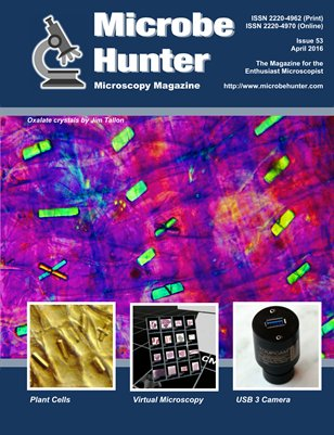 Microbehunter (issue 53)