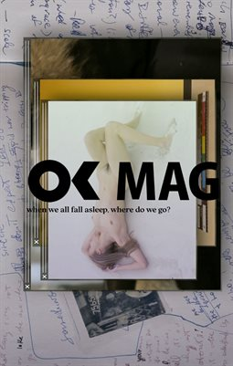 OK Mag - Special Art - Camille Henrot - When We All Fall Asleep, Where Do We Go?