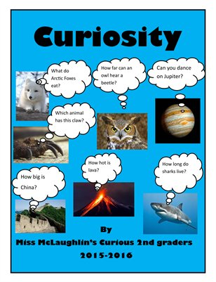 Ms McLaughlin's Curiosities