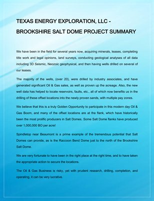 TEXAS ENERGY EXPLORATION LLC BROOKSHIRE SALT DOME PROJECT SUMMARY