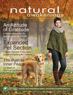 November 2013: Personal Growth and Expanded Pet Section