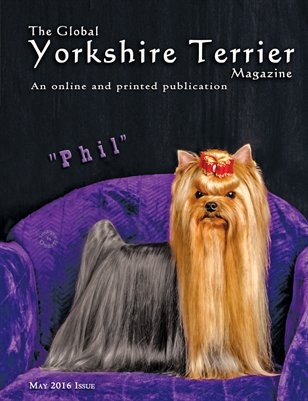 The Global Yorkshire Terrier Magazine -MAY 2016