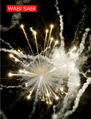 Issue 2, 2010. Fireworks from Below