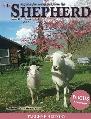 The Shepherd February 2019