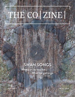 The Co|Zine Vol. 1